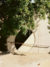 HomeTour_Arcosanti_08-762x1024